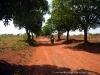Japo Zambézia Mozambique