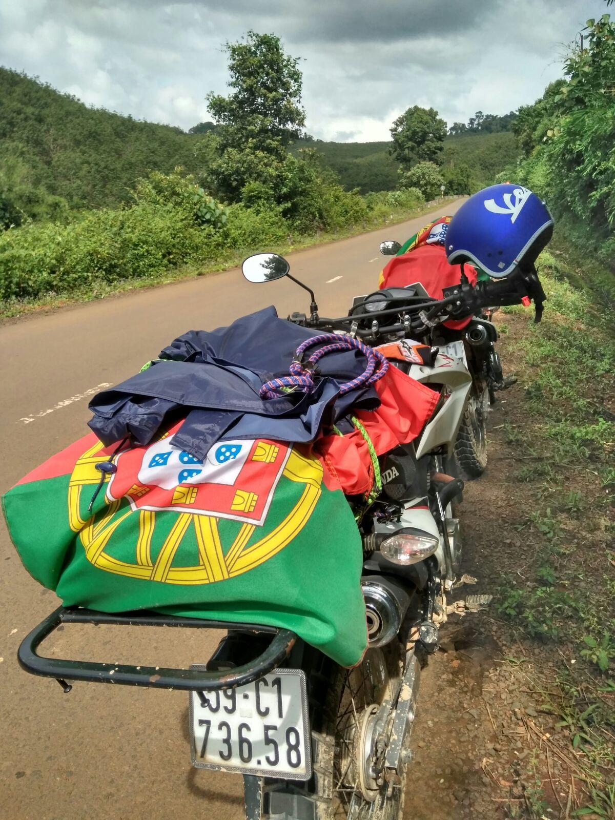 motos alinhadas